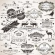 Stockvector : Set of vintage design elements