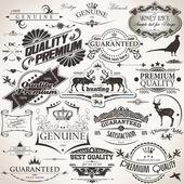 Insieme di elementi di design vintage — Vettoriale Stock