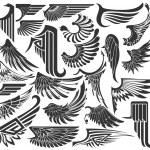 Большой набор эскизов крылья — Cтоковый вектор