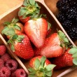 Composition of berries — Stock Photo