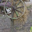 Old wheel from the cart. — 图库照片