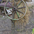 Old wheel from the cart. — Stok fotoğraf