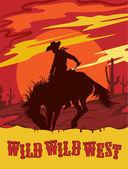 Wild west vector illustration — Stock Vector
