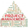 Project management tags — 图库照片