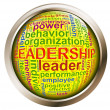 Shiny button - Leadership tags — Stock Photo #9178021