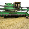 Combine harvester harvesting wheat cereal — Stock Photo #8096699