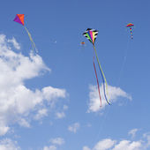 Kites Flying — Stock Photo
