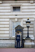 London Gaurd at Buckingham Palace — Stock Photo