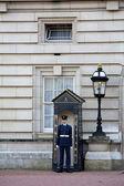 London Gaurd at Buckingham Palace — Stock Photo