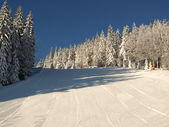 Ski run ski piste — Stock Photo