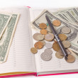 Stock Photo: Diary with money and pen isolated