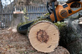 Man cuts tree with electric saw — Stock Photo