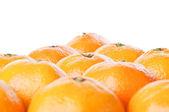 Verse mandarijn — Stockfoto