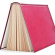 One red book — Stock Photo