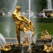 Stock Photo: Fountain in Petergof