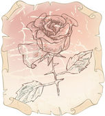 Old drawing roses on paper erased — Stock Vector