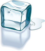 Ice cube melting — Vettoriale Stock