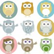 Vector illustration of colorful owls with nine color — Stock vektor