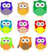 Set of Owls isolated on white — Stock Vector