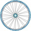 Bike wheel isolated on white background. vector — Stock Vector