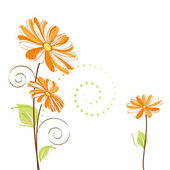 Springtime colorful Daisy flower — Stock Vector