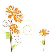 Springtime colorful Daisy flower — Stock Vector