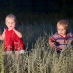 enfants sont promènent dans un champ au crépuscule — Photo