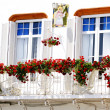 Balcony with flowers — Stock Photo #10690851