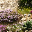 Massif of flowers in Sitges — Stock Photo