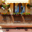 Balcony with pots — Stock Photo #10694647