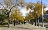Autumn in Barcelona — Stock Photo