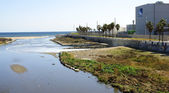 River mouth of the river Besós — Stock Photo