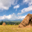 Agriculture and tourism in the mountains of Ukraine — Stock Photo