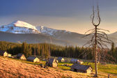 Dead wood and old houses in the Carpathian Mountains of Ukraine — Stock Photo