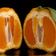 Tangerine — Stock Photo #9304910