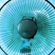 The fan — Stock Photo