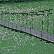 Stock Photo: Bridge,
