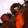 Metallurgy - Foto de Stock