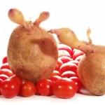Potato, tomato — Stock Photo #9364663