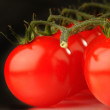 Cherry tomatoes — Stock Photo #9519144