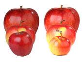 Красное яблоко — Стоковое фото
