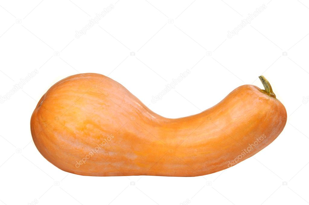 Pumpkin on a white background — Stock Photo #9518891