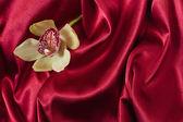 Orchidee auf roter seide — Stockfoto