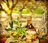 Olives still life — Stock Photo
