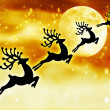 Reindeer silhouette in night sky - Stock Photo
