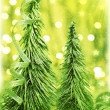 Green Christmas tree — Stock Photo #8176331