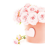 Pot of pink roses — Stockfoto
