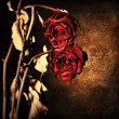 Grunge wilted roses border - Stock Photo