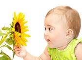 Baby girl exploring flower — Stock Photo