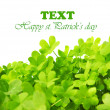 Green fresh clover border — Stock Photo #8957425
